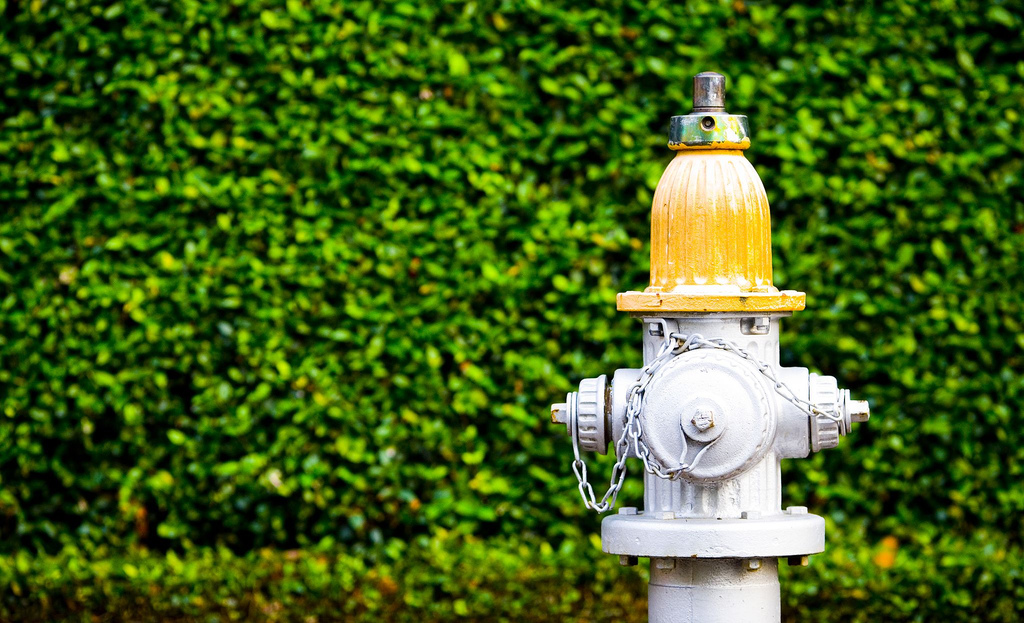 Five Lessons I Learned From Fire Hydrants