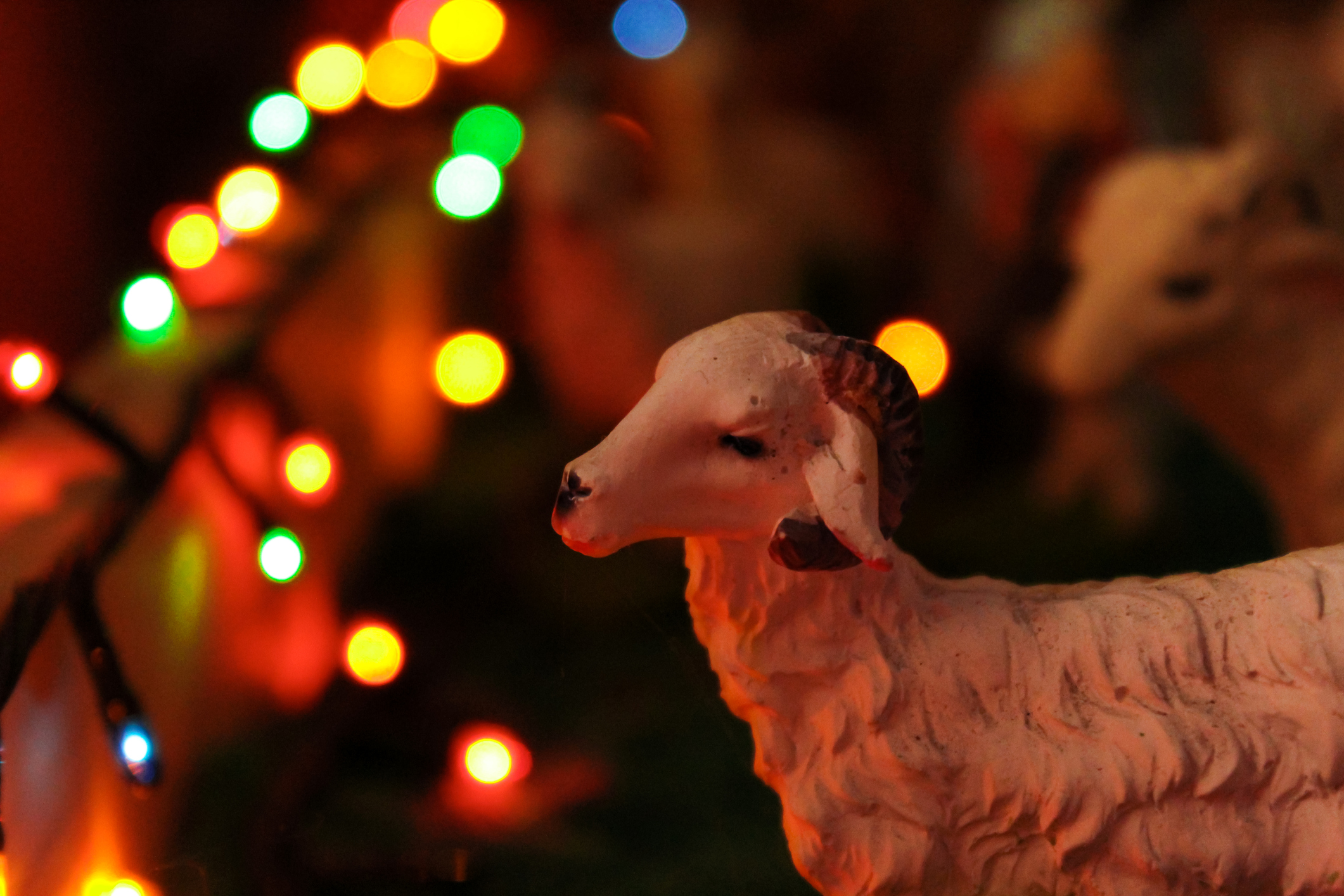 What I've Learned Spending Christmas Broke in a Developing Nation