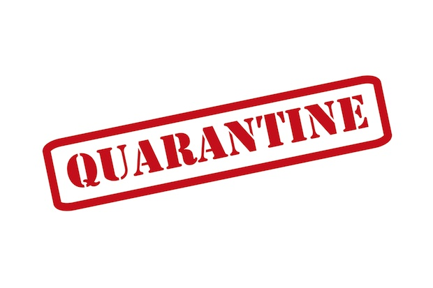 Video: To Quarantine or Not to Quarantine