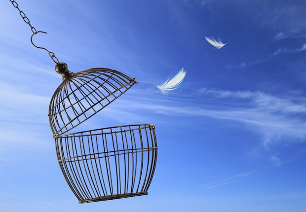 How Free Are We? The Job of Passover
