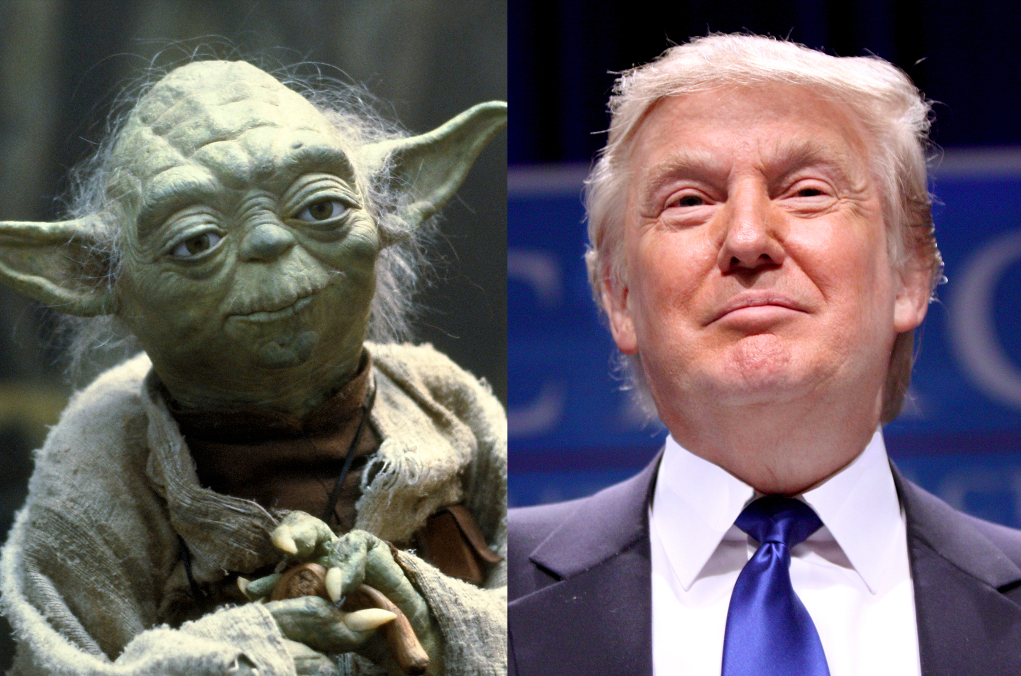 Trump Is The Republican Party's Yoda
