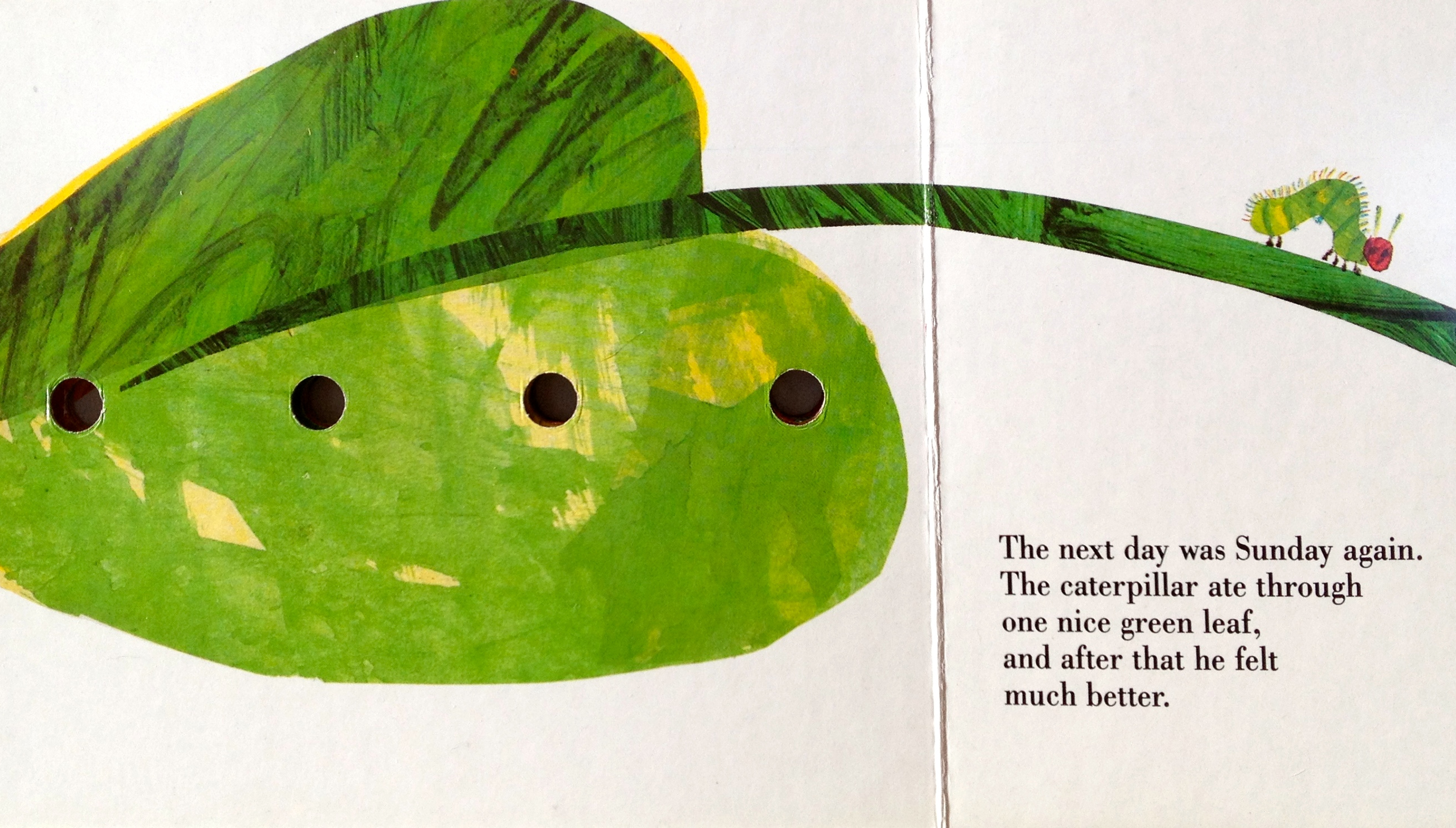 The Wisdom Of One Nice Green Leaf