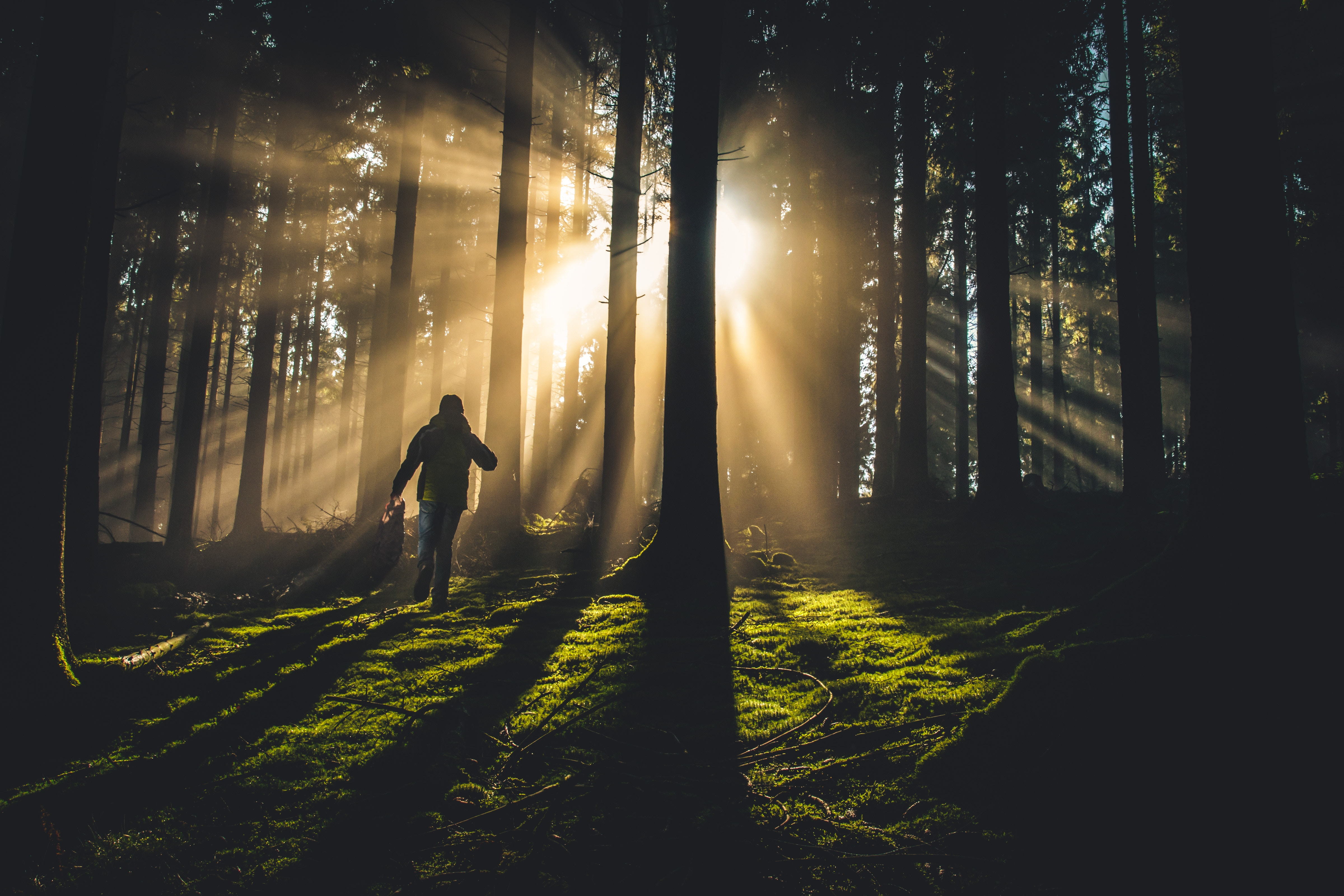 Why I Walk In God's Shadow