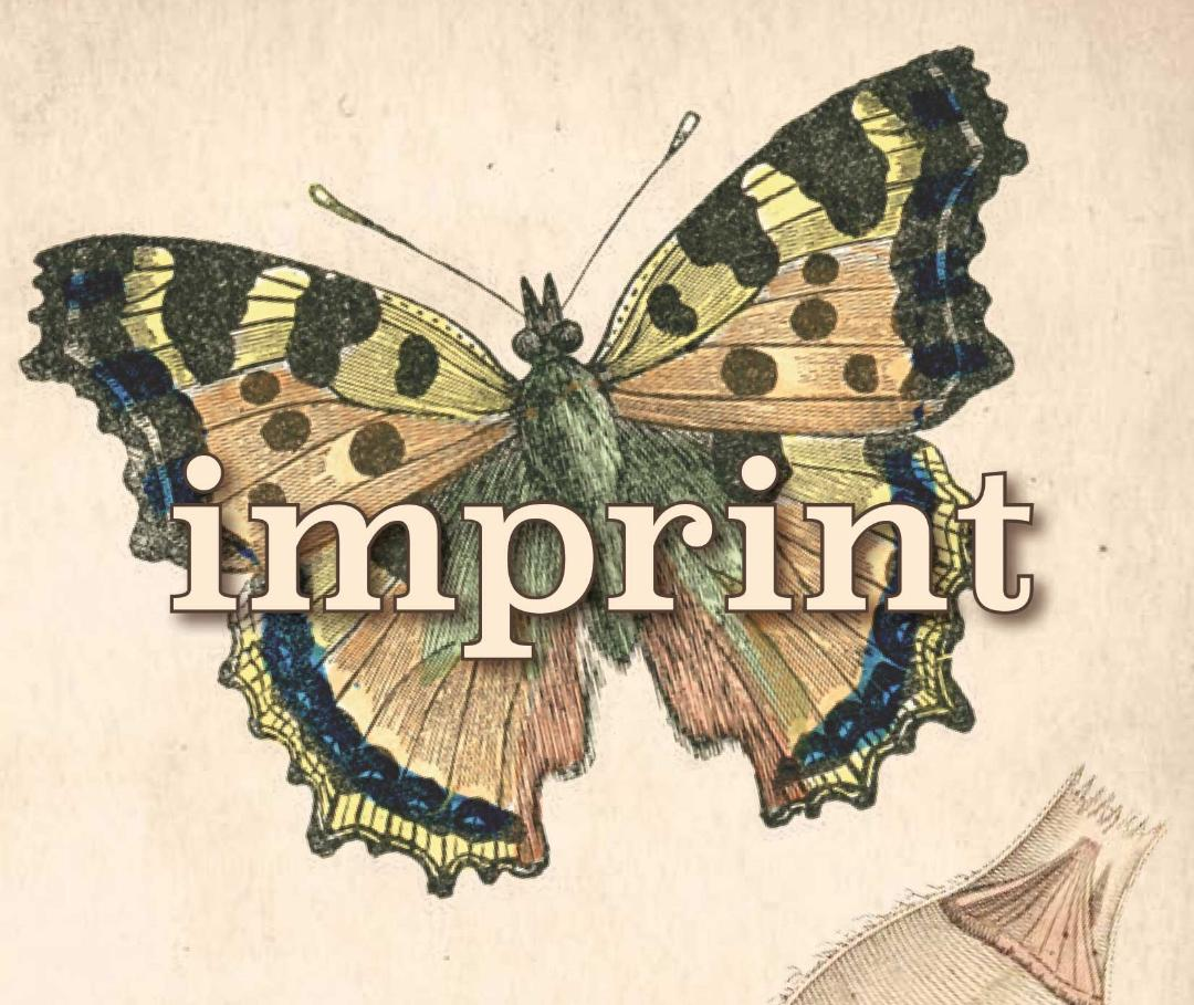 Imprint: A Memoir Of Surviving Holocaust Transgenerational Trauma